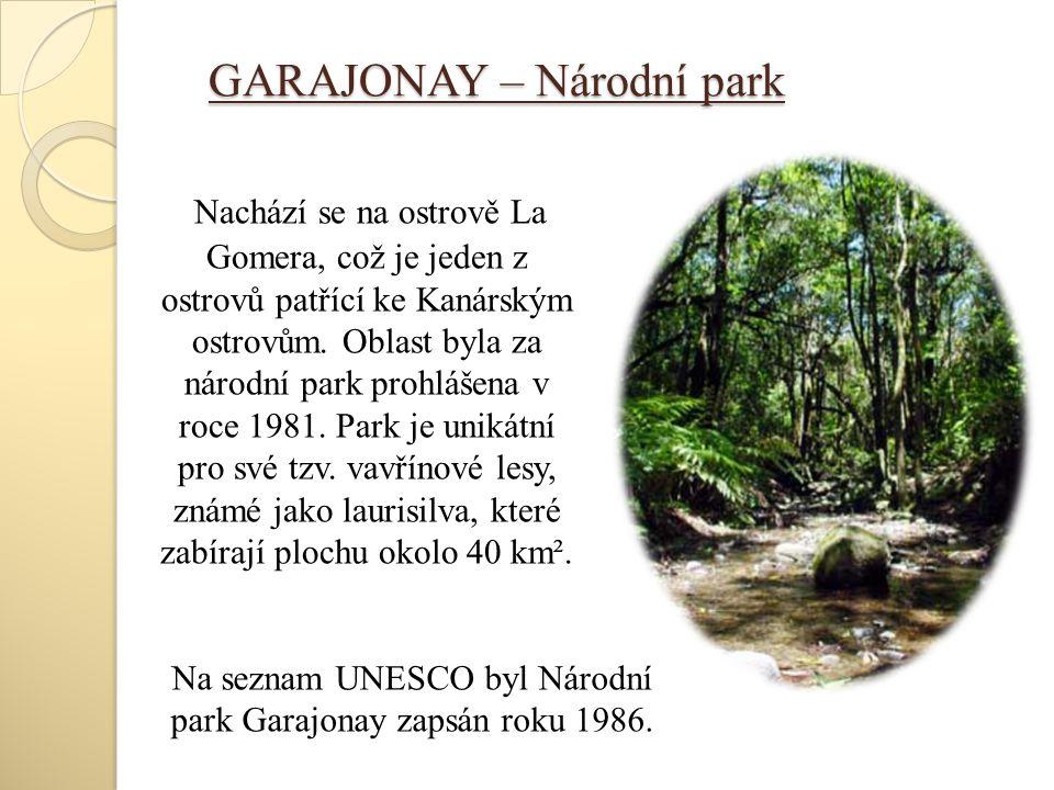 GARAJONAY – Národní park
