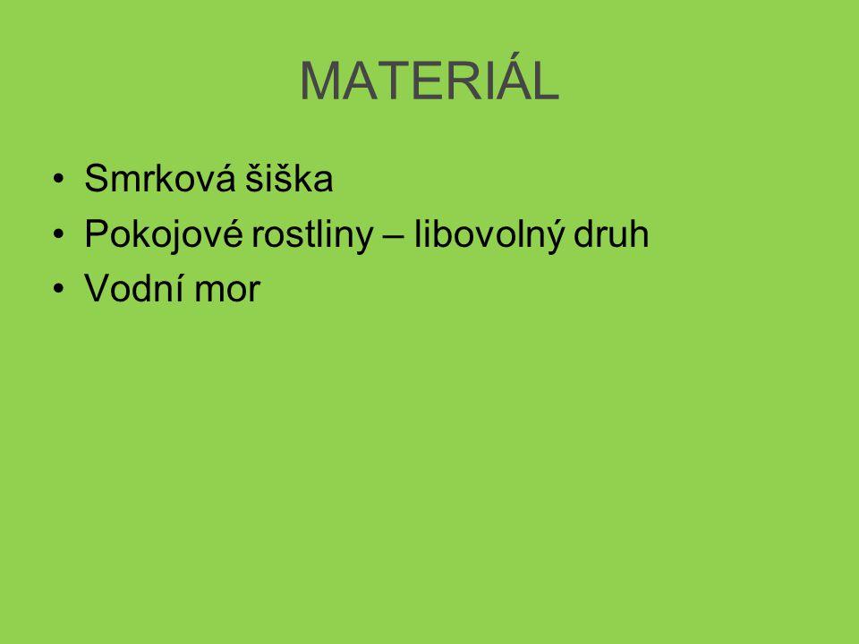 MATERIÁL Smrková šiška Pokojové rostliny – libovolný druh Vodní mor