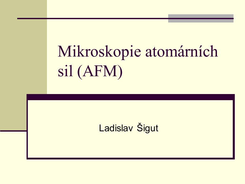 Mikroskopie atomárních sil (AFM)