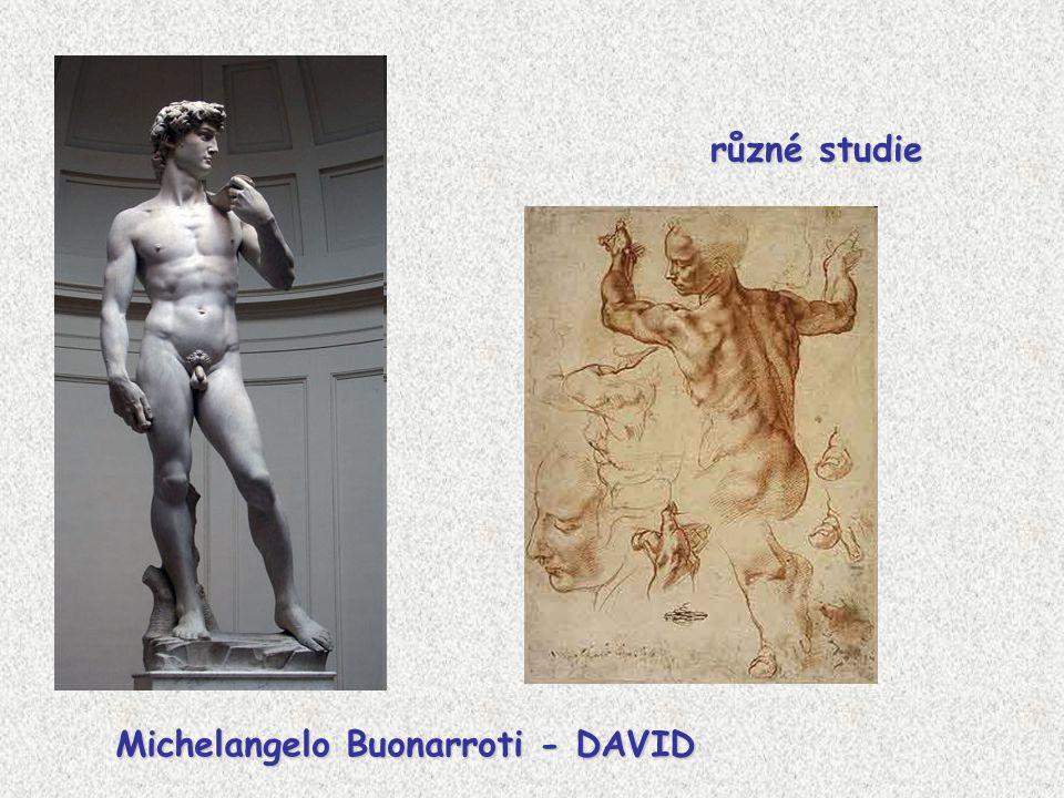 různé studie Michelangelo Buonarroti - DAVID