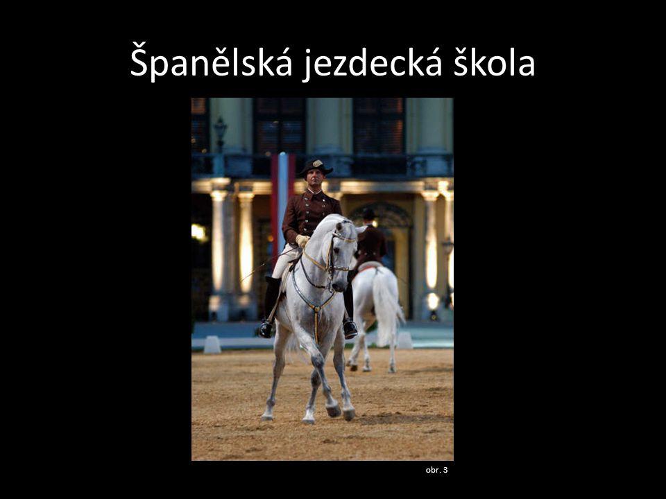 Španělská jezdecká škola