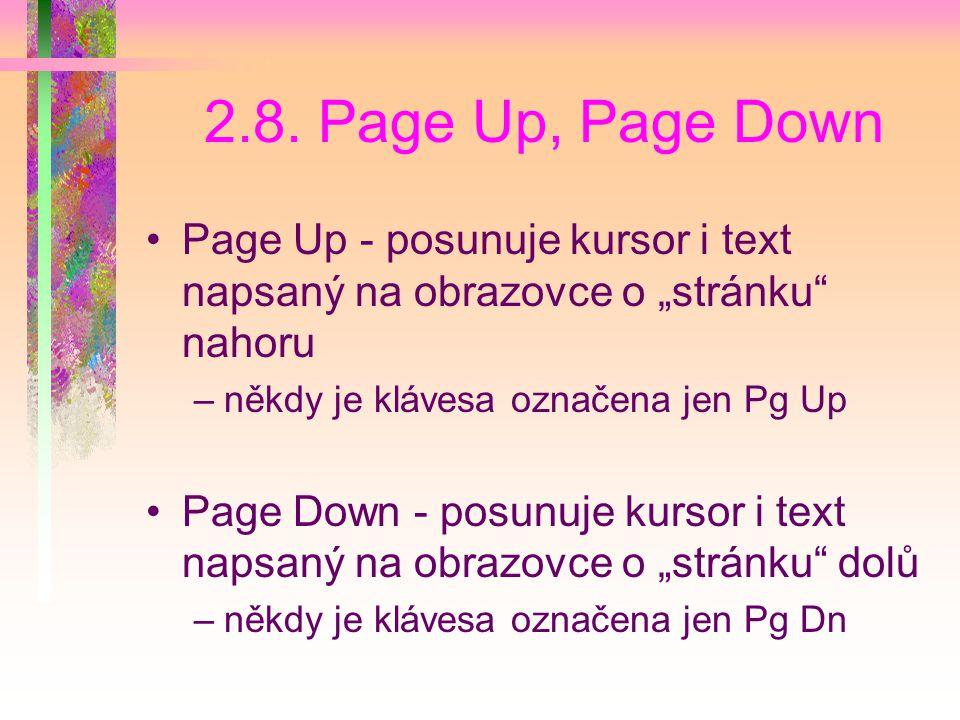 """2.8. Page Up, Page Down Page Up - posunuje kursor i text napsaný na obrazovce o """"stránku nahoru. někdy je klávesa označena jen Pg Up."""