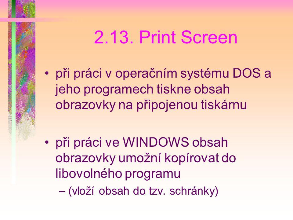 2.13. Print Screen při práci v operačním systému DOS a jeho programech tiskne obsah obrazovky na připojenou tiskárnu.
