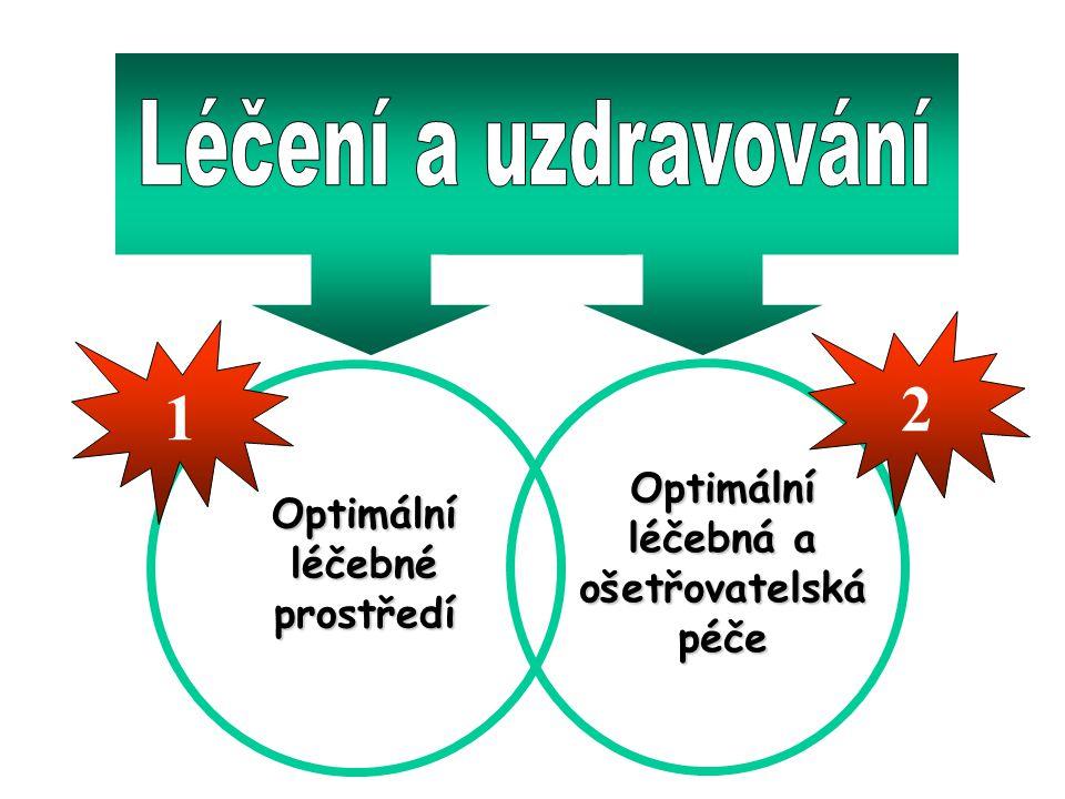 2 1 Léčení a uzdravování Optimální Optimální léčebná a léčebné