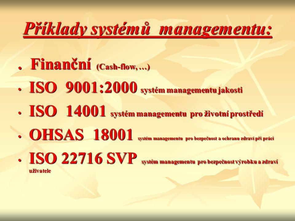 Příklady systémů managementu: