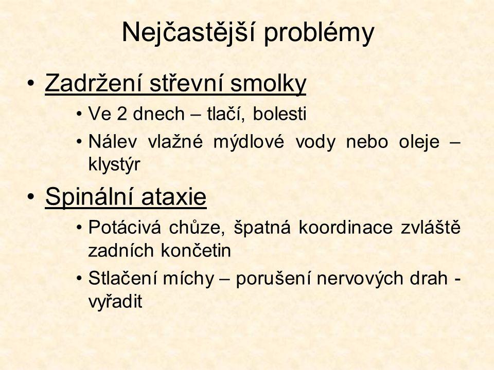 Nejčastější problémy Zadržení střevní smolky Spinální ataxie