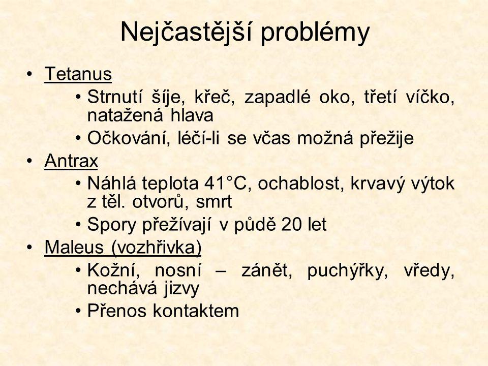 Nejčastější problémy Tetanus