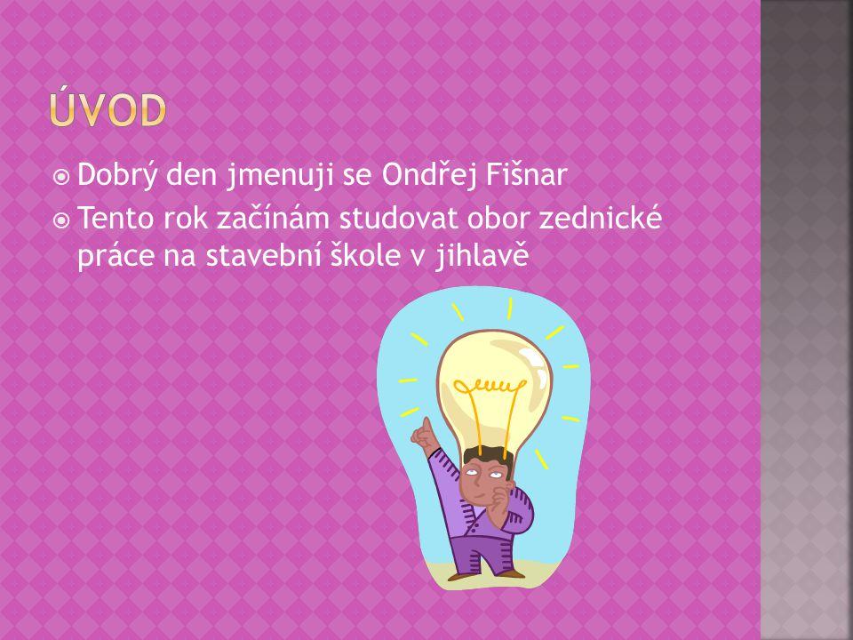 Úvod Dobrý den jmenuji se Ondřej Fišnar