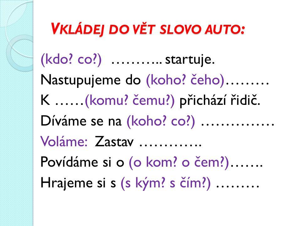 Vkládej do vět slovo auto: