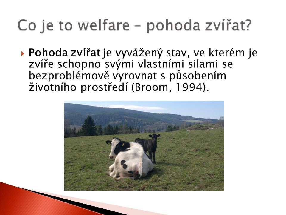 Co je to welfare – pohoda zvířat