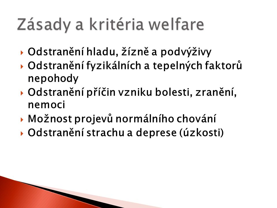 Zásady a kritéria welfare