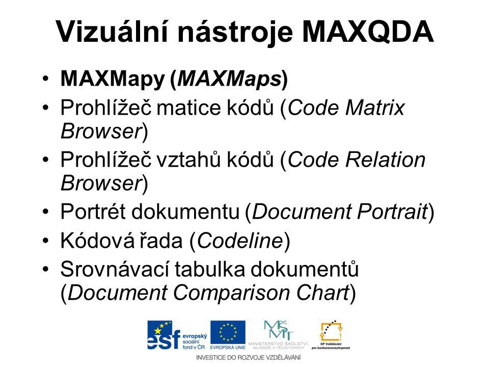 Vizuální nástroje MAXQDA