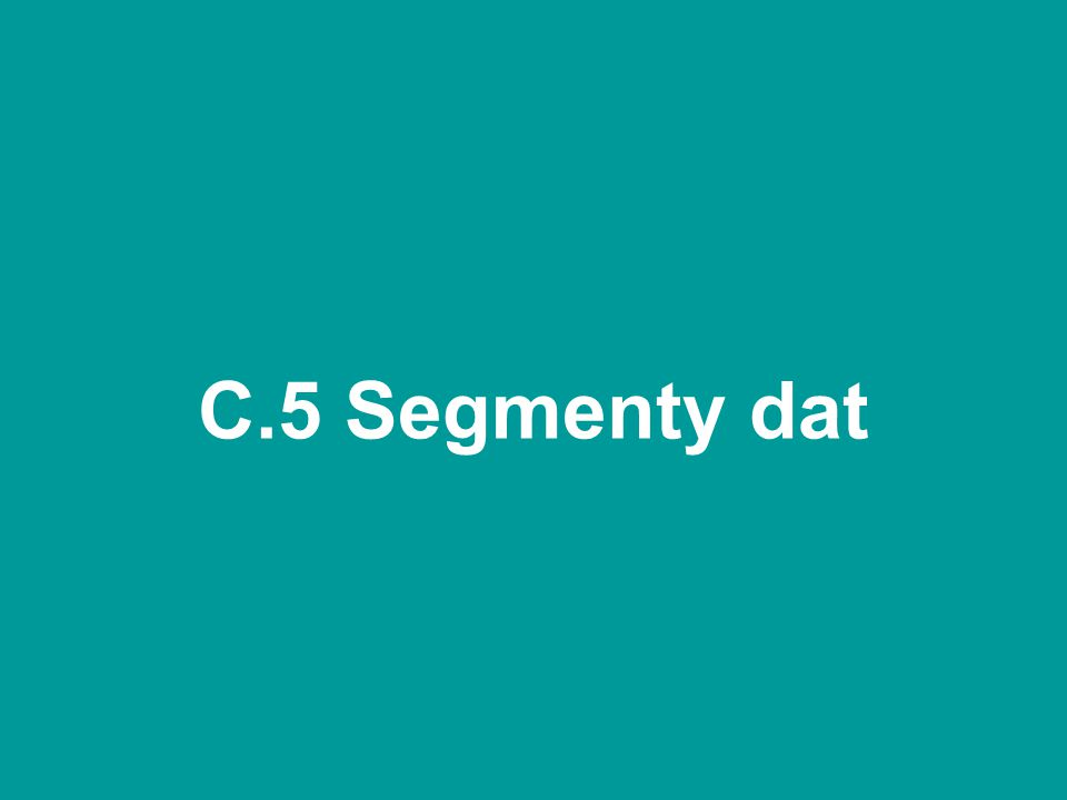 C.5 Segmenty dat