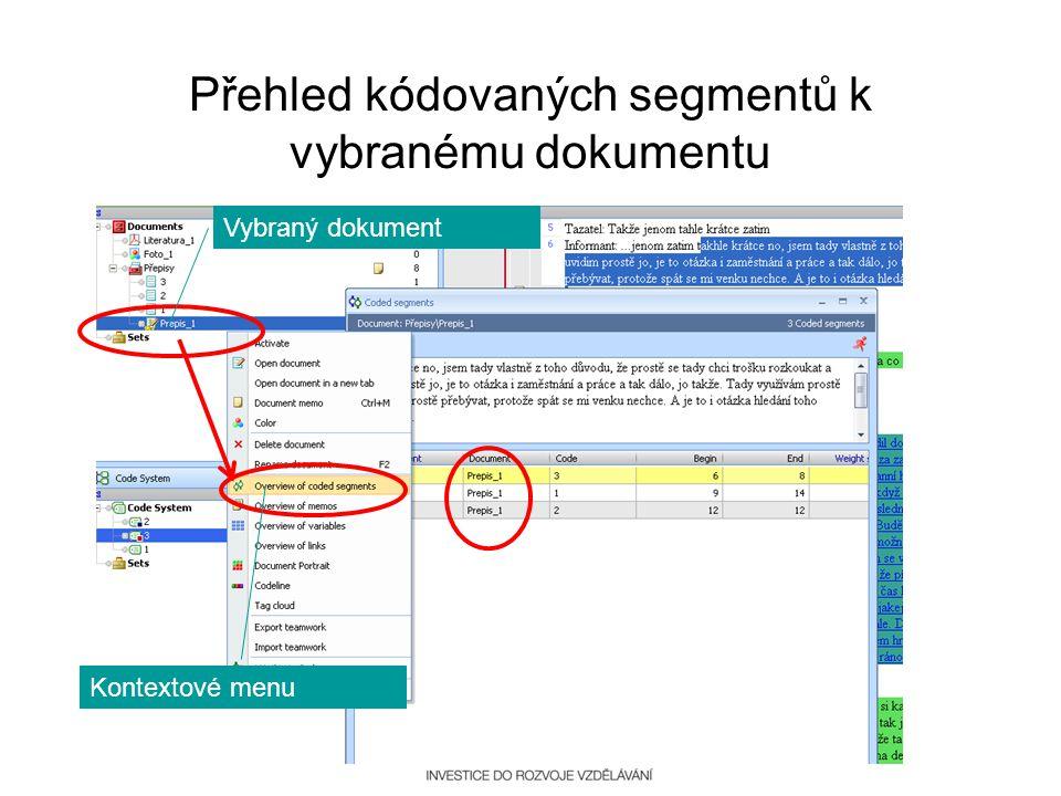 Přehled kódovaných segmentů k vybranému dokumentu