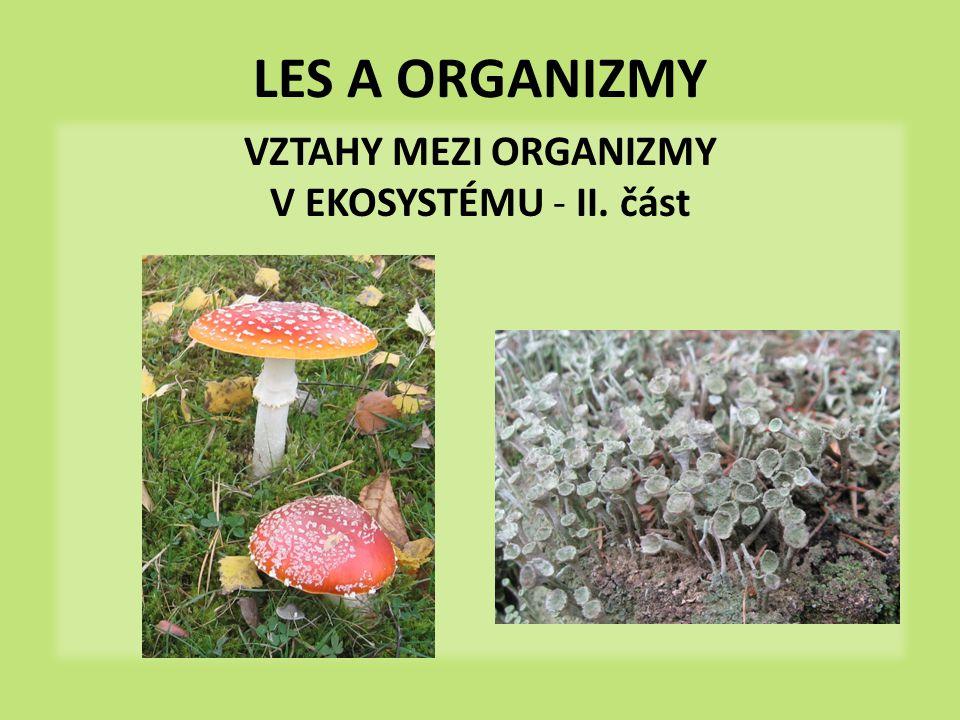 VZTAHY MEZI ORGANIZMY V EKOSYSTÉMU - II. část