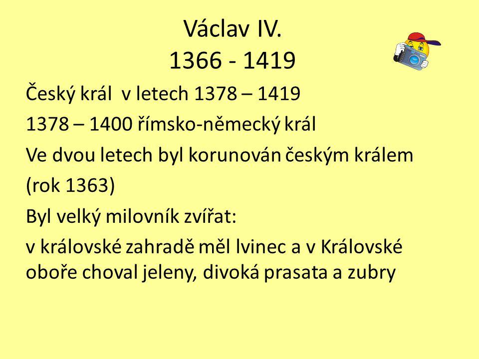 Václav IV. 1366 - 1419 Český král v letech 1378 – 1419