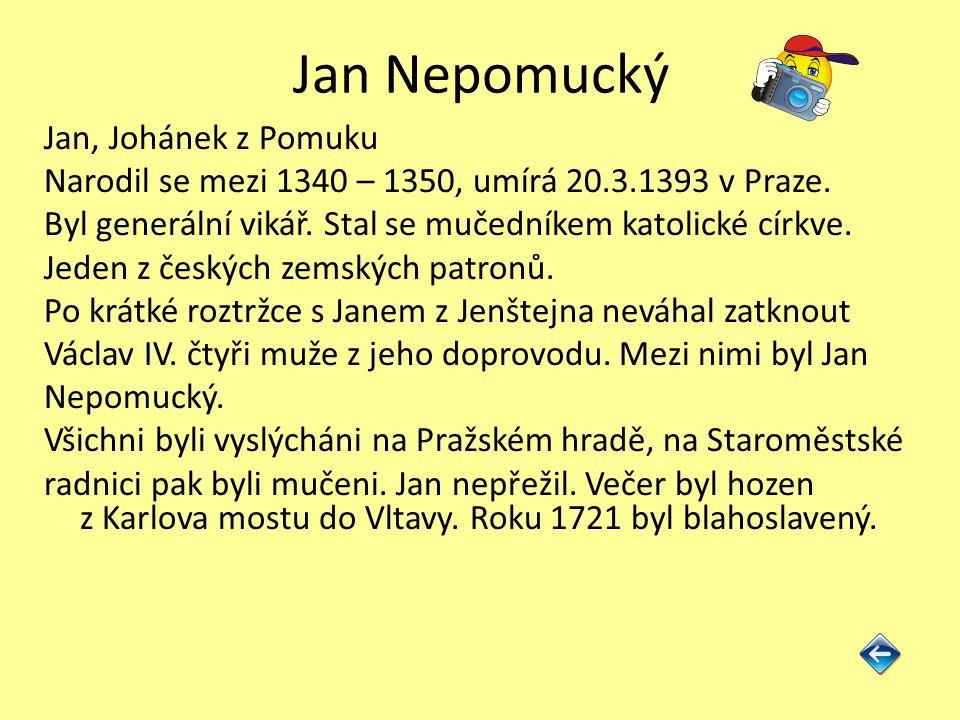 Jan Nepomucký Jan, Johánek z Pomuku