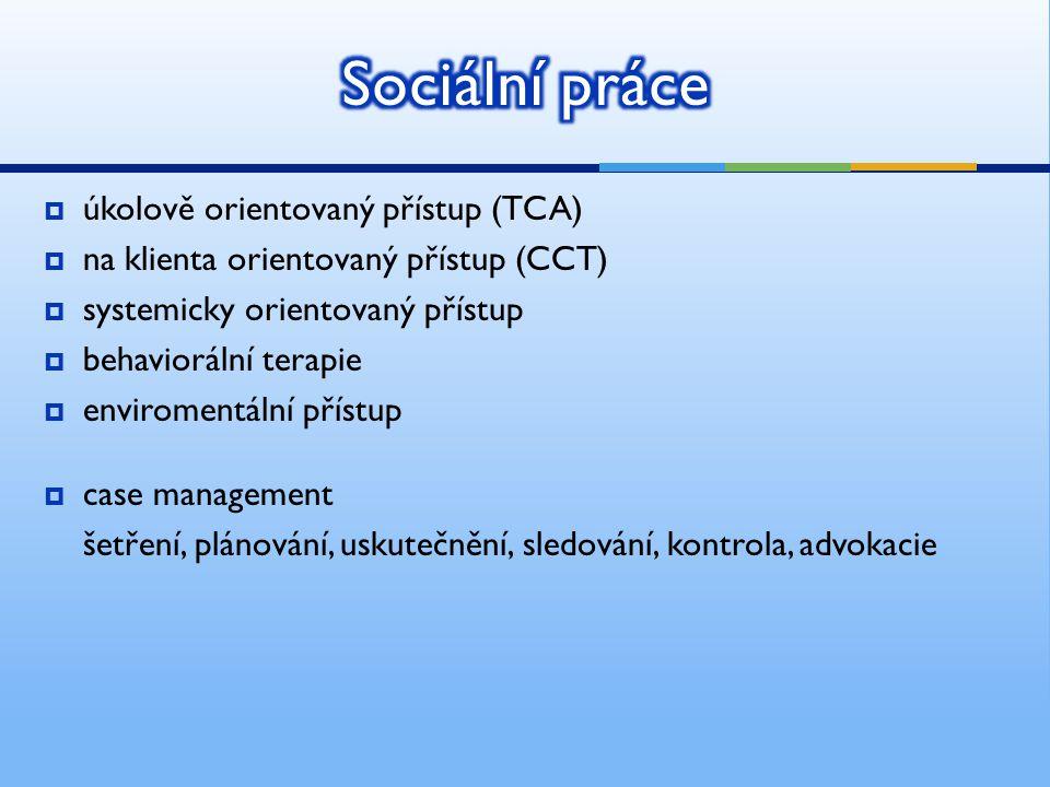 Sociální práce úkolově orientovaný přístup (TCA)