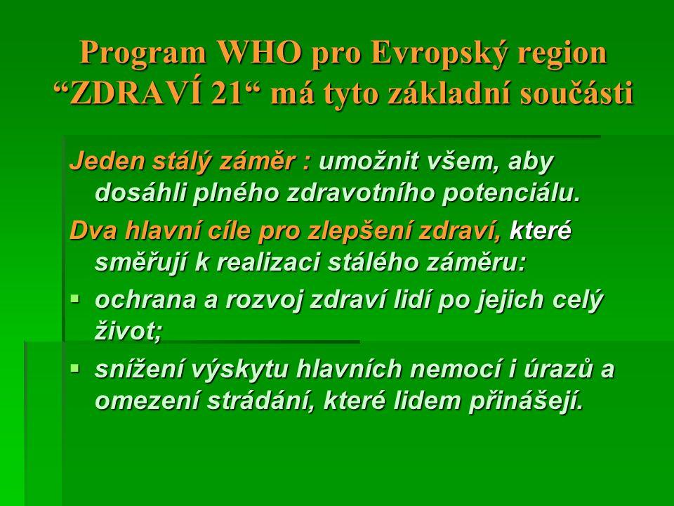 Program WHO pro Evropský region ZDRAVÍ 21 má tyto základní součásti