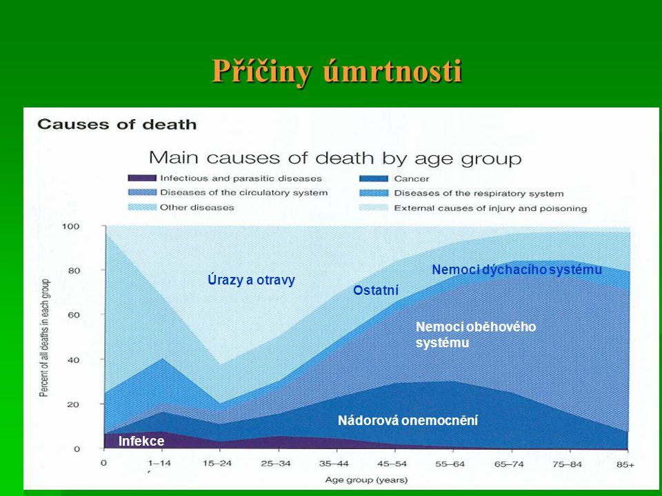 Příčiny úmrtnosti Nemoci dýchacího systému Úrazy a otravy Ostatní