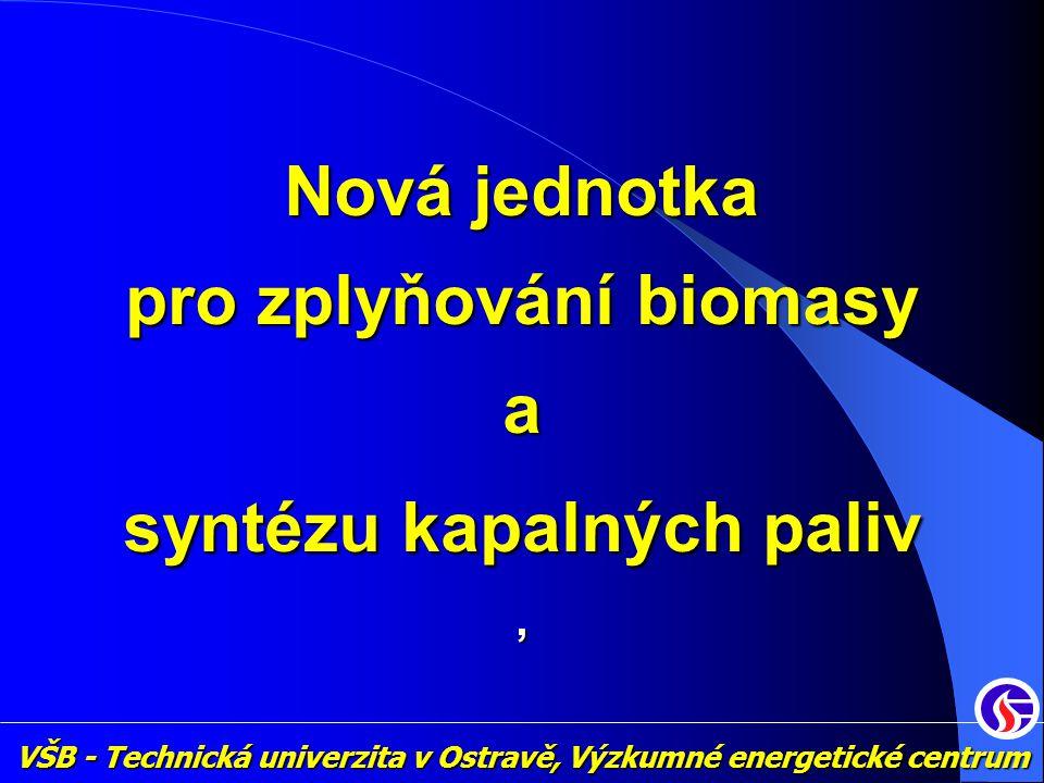 pro zplyňování biomasy syntézu kapalných paliv