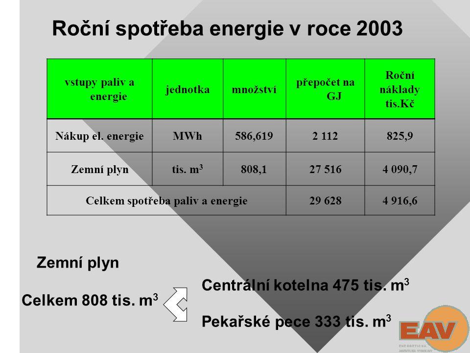 Celkem spotřeba paliv a energie