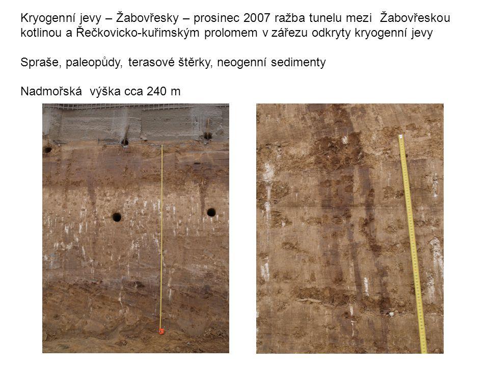 Kryogenní jevy – Žabovřesky – prosinec 2007 ražba tunelu mezi Žabovřeskou kotlinou a Řečkovicko-kuřimským prolomem v zářezu odkryty kryogenní jevy