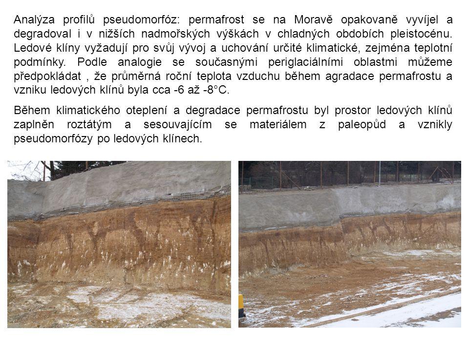 Analýza profilů pseudomorfóz: permafrost se na Moravě opakovaně vyvíjel a degradoval i v nižších nadmořských výškách v chladných obdobích pleistocénu. Ledové klíny vyžadují pro svůj vývoj a uchování určité klimatické, zejména teplotní podmínky. Podle analogie se současnými periglaciálními oblastmi můžeme předpokládat , že průměrná roční teplota vzduchu během agradace permafrostu a vzniku ledových klínů byla cca -6 až -8°C.