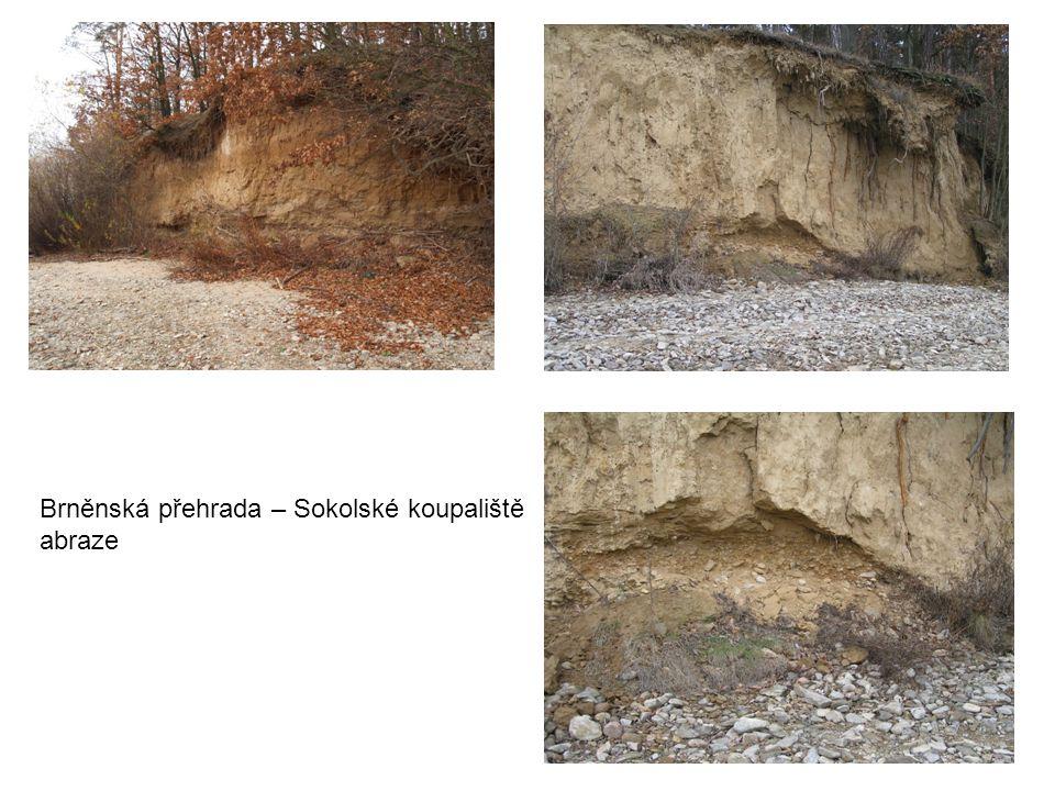 Brněnská přehrada – Sokolské koupaliště