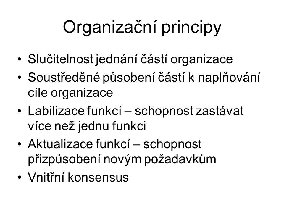 Organizační principy Slučitelnost jednání částí organizace