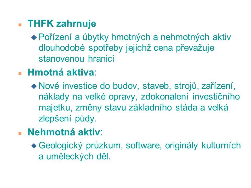 THFK zahrnuje Hmotná aktiva: Nehmotná aktiv:
