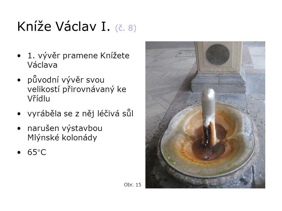 Kníže Václav I. (č. 8) 1. vývěr pramene Knížete Václava