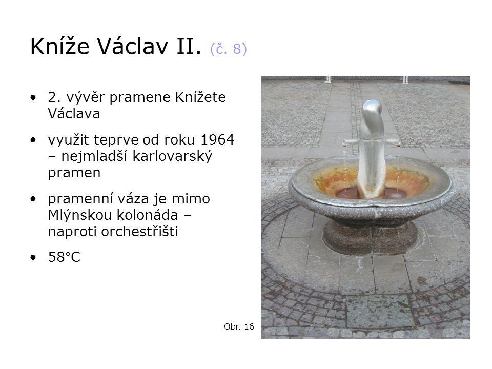 Kníže Václav II. (č. 8) 2. vývěr pramene Knížete Václava