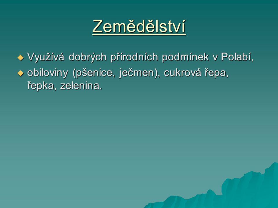 Zemědělství Využívá dobrých přírodních podmínek v Polabí,