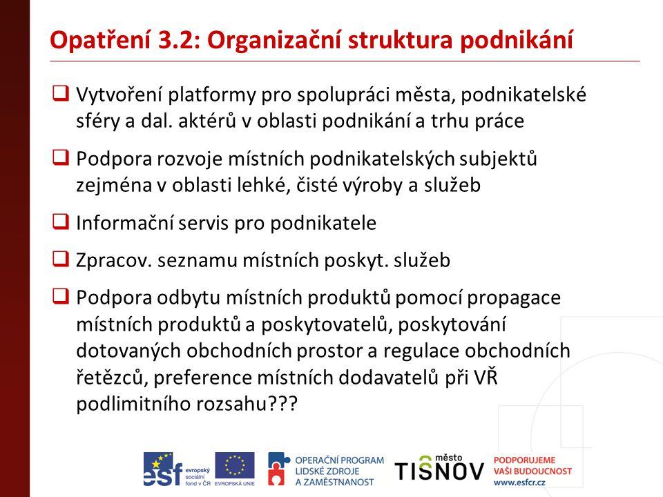 Opatření 3.2: Organizační struktura podnikání