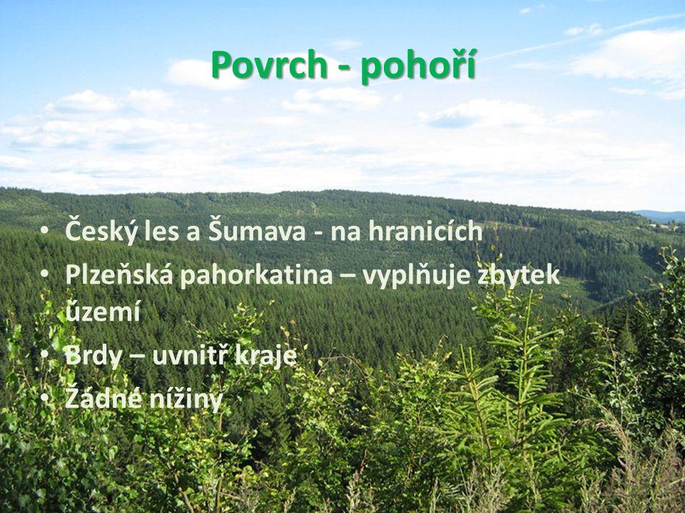Povrch - pohoří Český les a Šumava - na hranicích