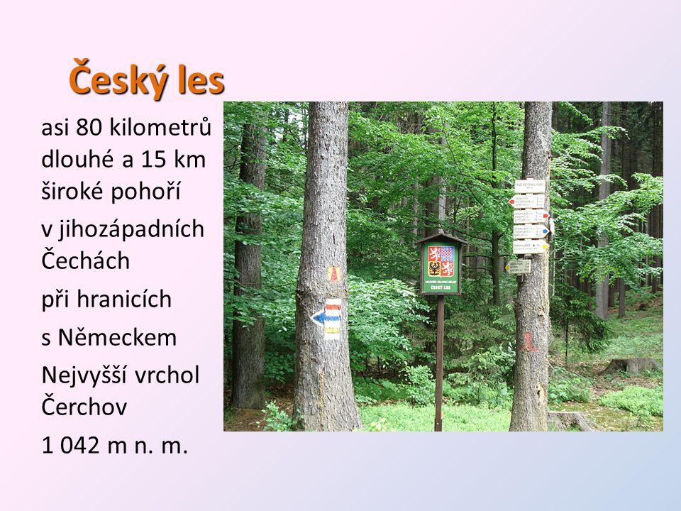 Český les asi 80 kilometrů dlouhé a 15 km široké pohoří