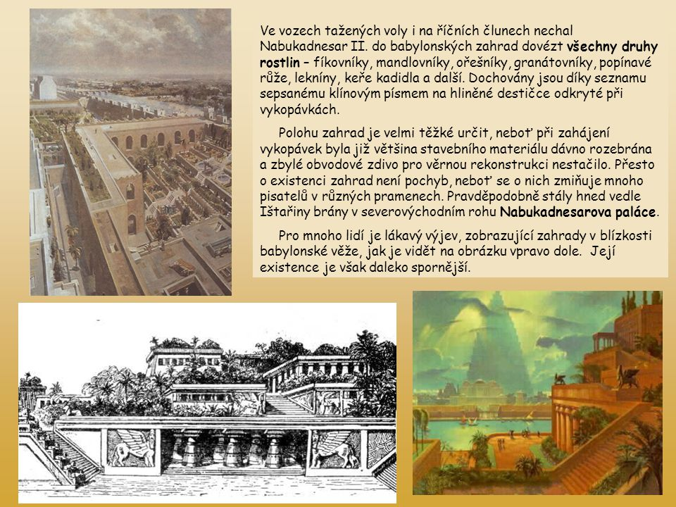 Ve vozech tažených voly i na říčních člunech nechal Nabukadnesar II