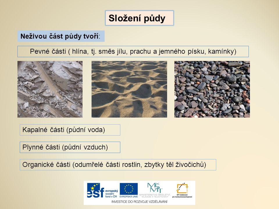 Pevné části ( hlína, tj. směs jílu, prachu a jemného písku, kamínky)