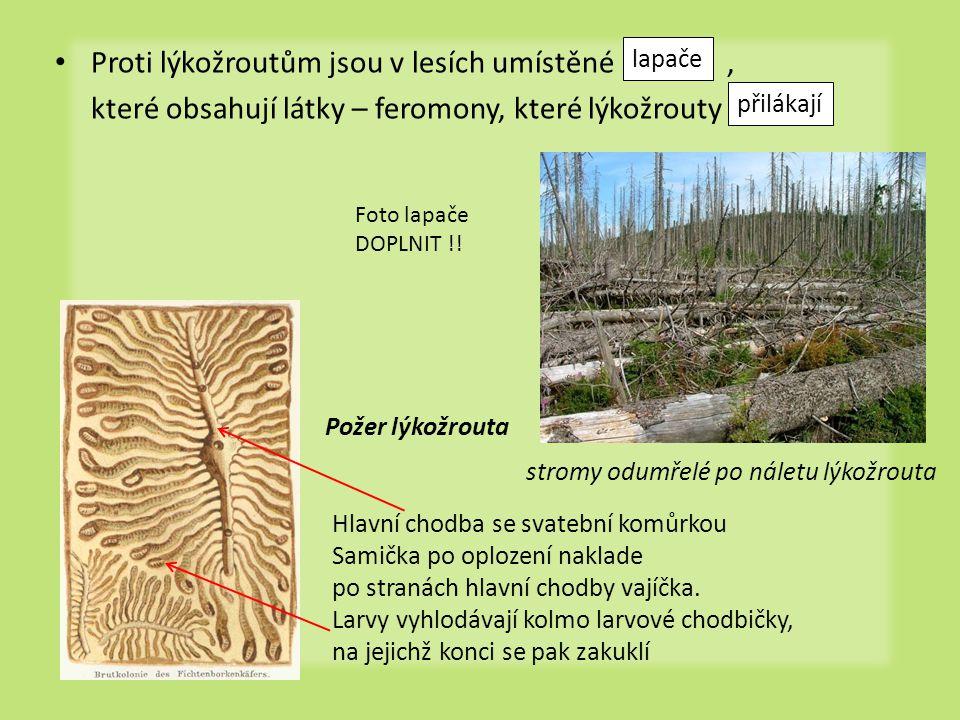 Proti lýkožroutům jsou v lesích umístěné ,