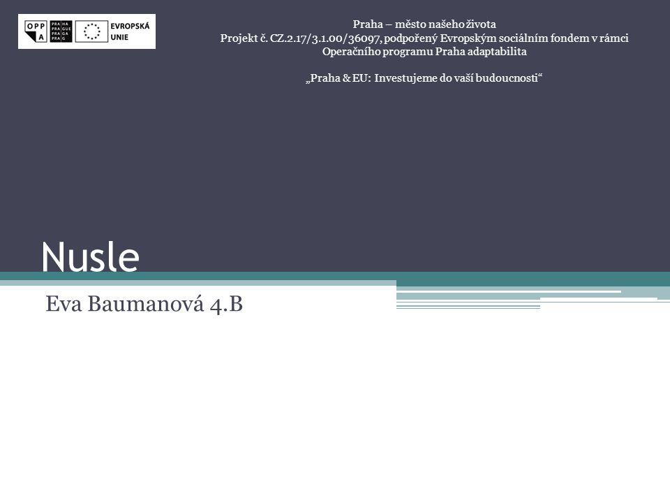 Nusle Eva Baumanová 4.B Praha – město našeho života