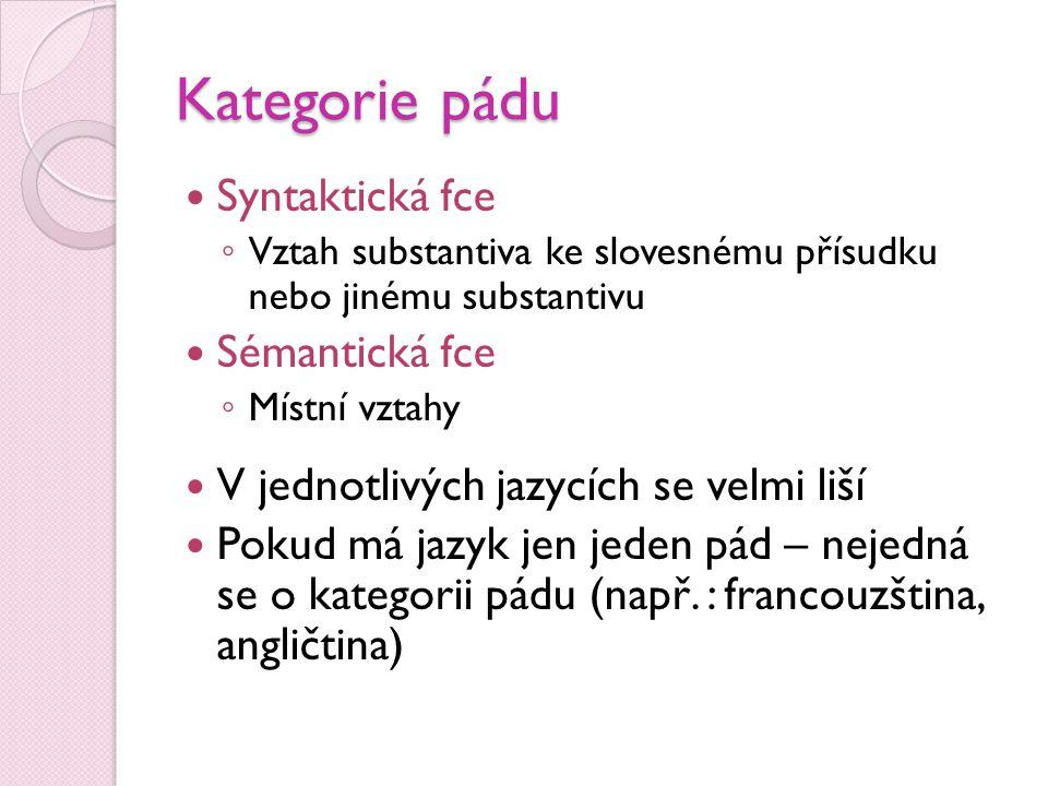 Kategorie pádu Syntaktická fce Sémantická fce