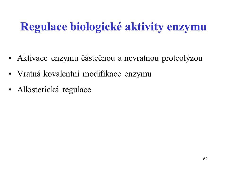 Regulace biologické aktivity enzymu