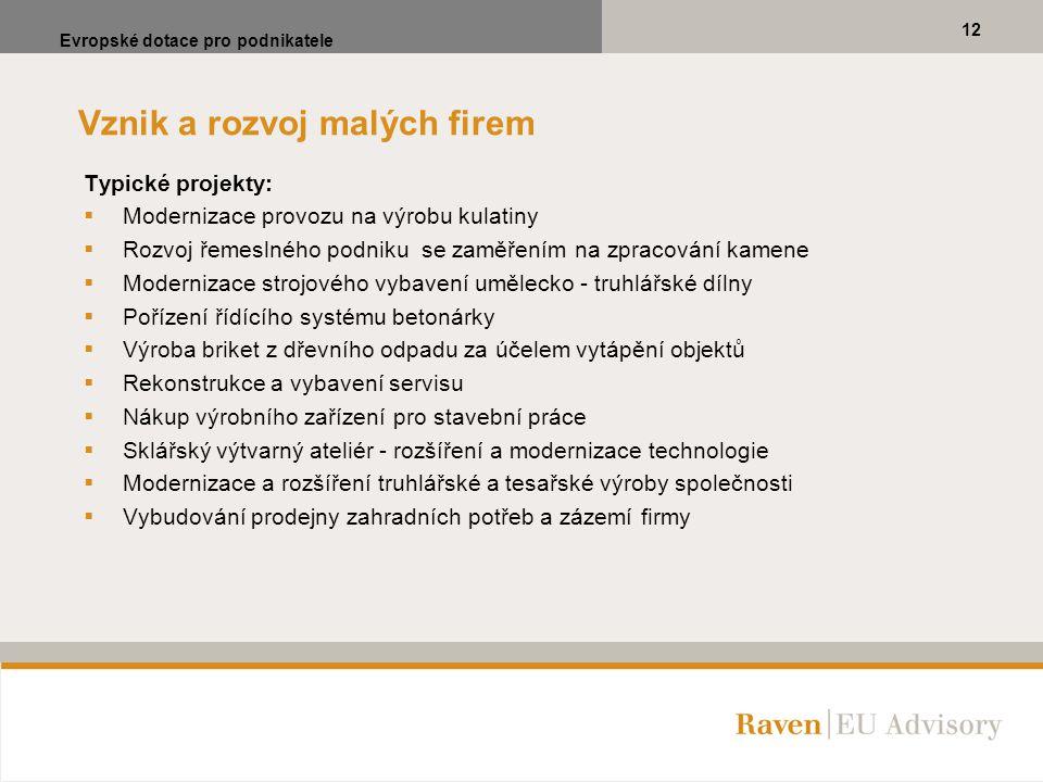 Vznik a rozvoj malých firem