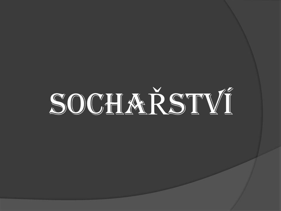 SOCHAŘSTVÍ