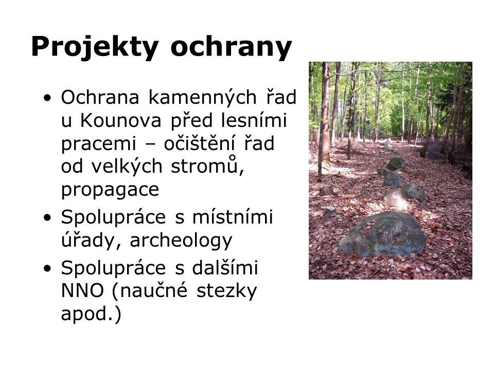 Projekty ochrany Ochrana kamenných řad u Kounova před lesními pracemi – očištění řad od velkých stromů, propagace.