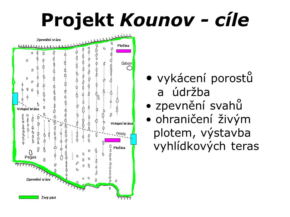 Projekt Kounov - cíle vykácení porostů a údržba zpevnění svahů