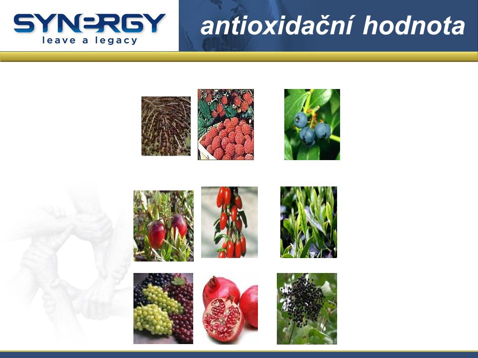 antioxidační hodnota