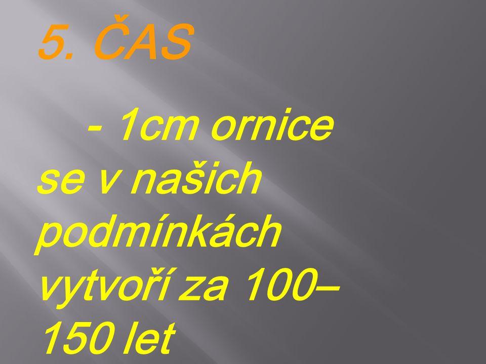 5. ČAS - 1cm ornice se v našich podmínkách vytvoří za 100–150 let