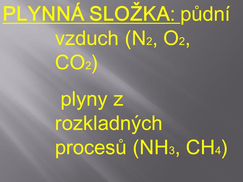 PLYNNÁ SLOŽKA: půdní vzduch (N2, O2, CO2)